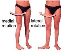 internal-and-external-hip-rotation