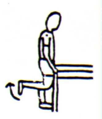Knee flexion hamstring action