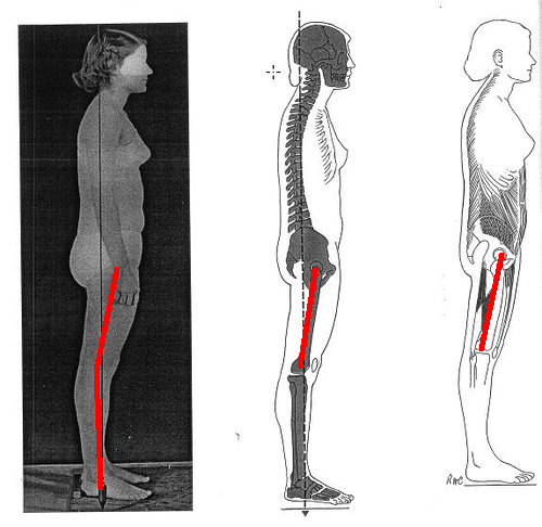 Looking at pelvic tilts -The hips only tell you part of ...