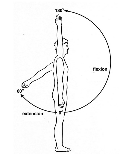Progression to lifting your arms overhead pain free b reddy org