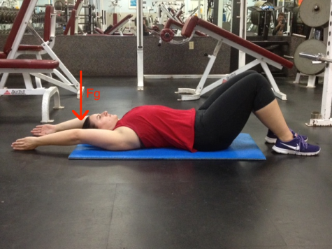 Supine Arm Raise Fully overhead with gravity line COM