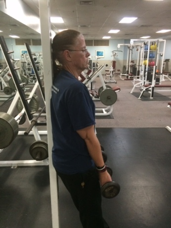 Bicep Curl Humeri Flexed and Forearm Supination