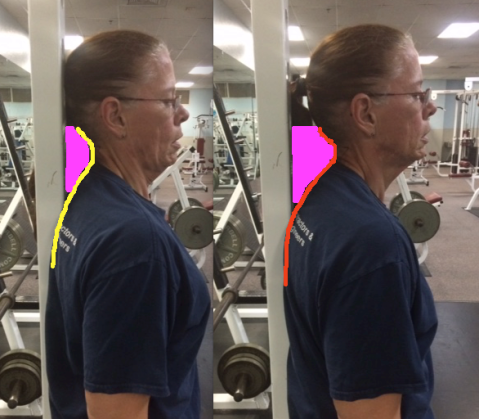 Bicep Curls with different head set ups side by side and shading