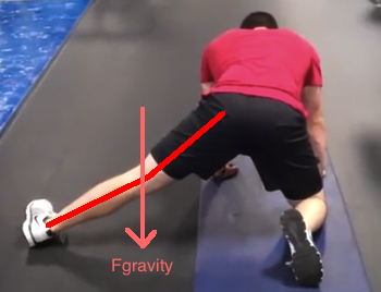 Split Stance Adductor Stretch with medial displacement line and gravity