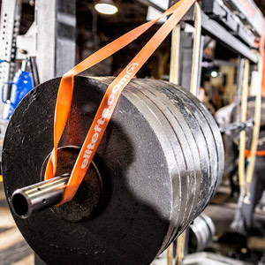 elitefts bands on squat