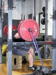 exrx bands squatting