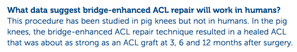 Bridge acl repair about as strong