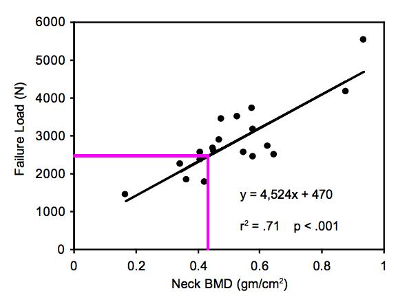 bone-density-vs-force-tolerance-running-sprinting