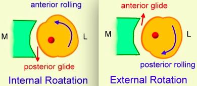 humeral head internal external rotation anterior posterior glide