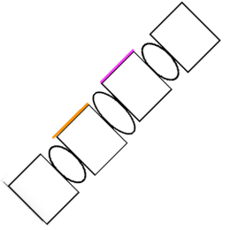 flexion-shear-vertebrae-spine-with-colors