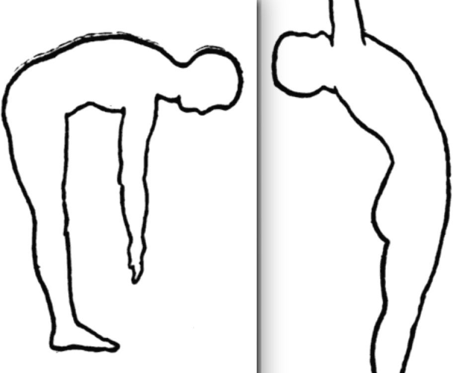 spine-flexion-extension-1